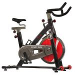Sunny Health & Fitness SF-B1002C Indoor Studio Cycle Exercise Bicycle