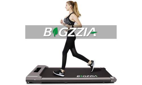 Bigzzia Walking Treadmill